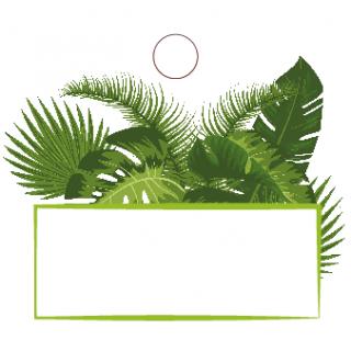 Etiquette thème tropical