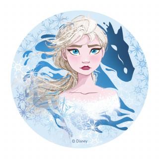 deco-gateau-anniversaire-reine-des-neiges-cheval