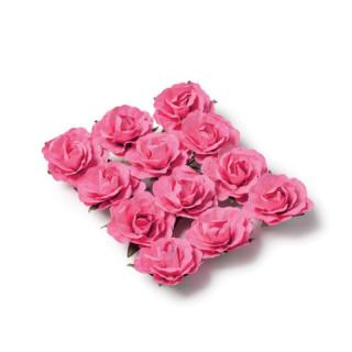 rose-fuschia-par-12