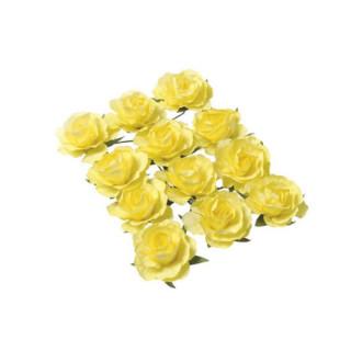 jaune-rose-fleur