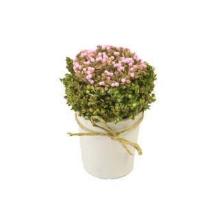 Compo fleurs roses séchées dans pot rond