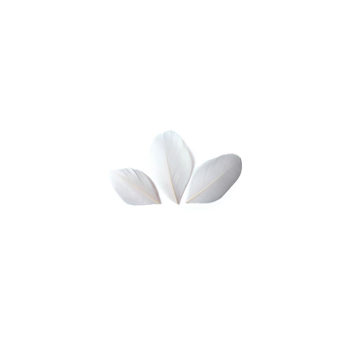 Plumes coupées blanc 6 cm sachet 3 gr