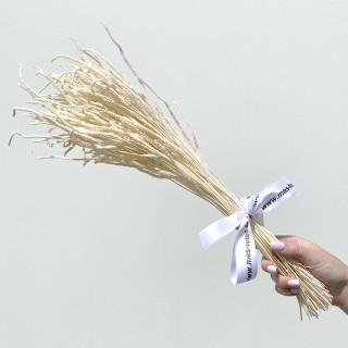 Bouquet de will tail séchés
