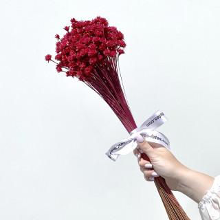 Bouquet d'avoine séché