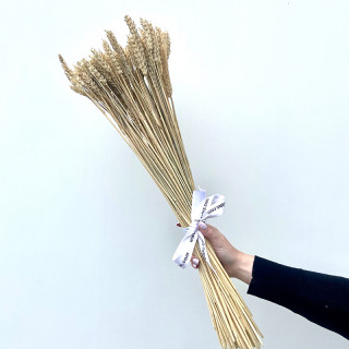 Bouquet de blé séché