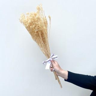 Bouquet de brooms séchés