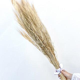 Bouquet d'herbe folle