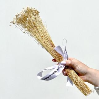 Bouquet de glixia séchée blanche