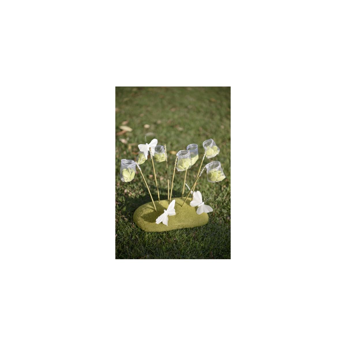 12x Filet Papillon + Socle