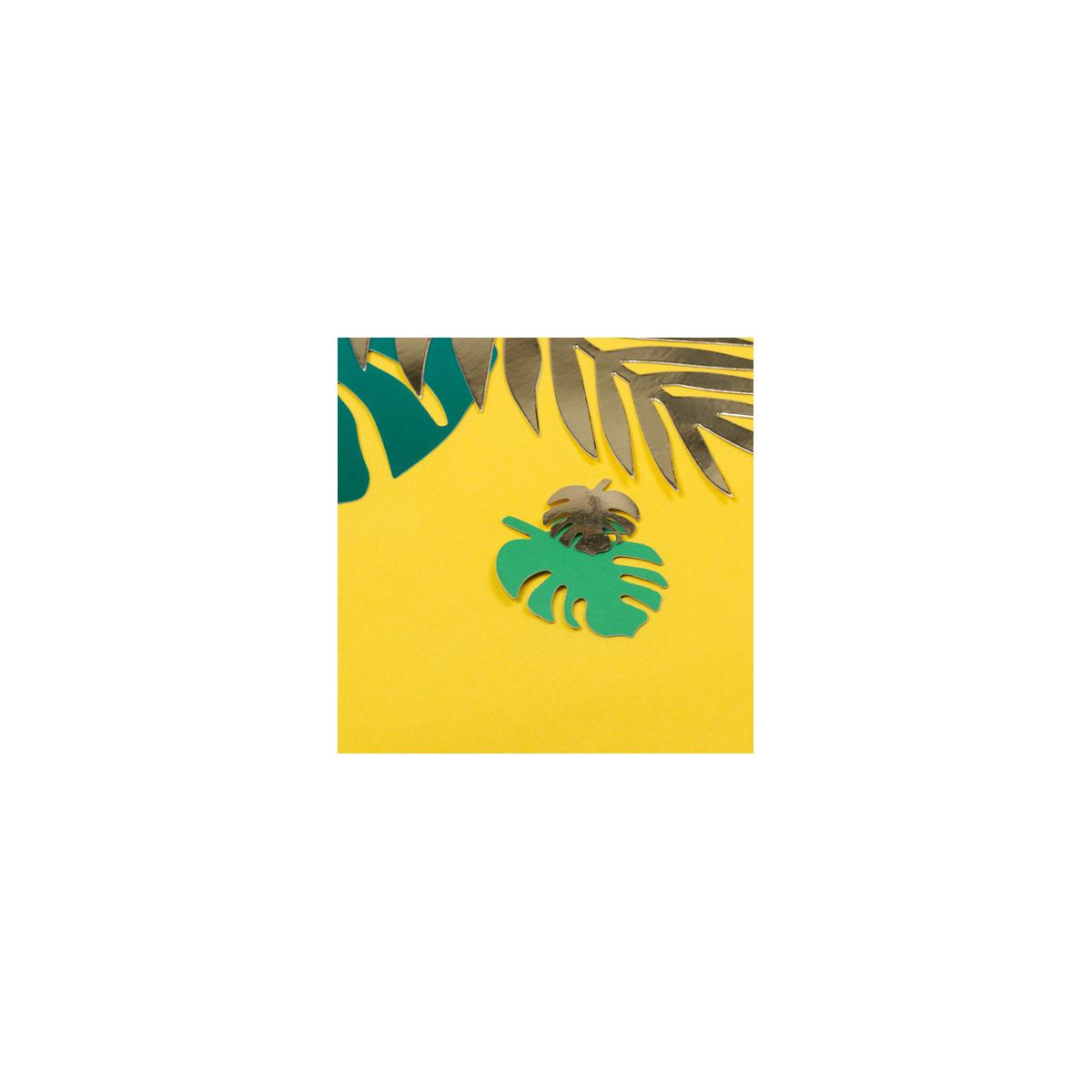 marque-place-tropicale