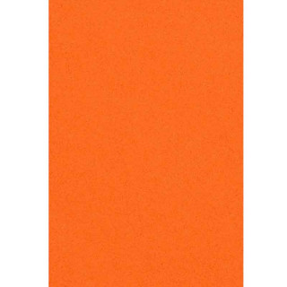 Nappe en Plastique Orange