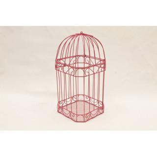 Cage carte de voeux fuchsia